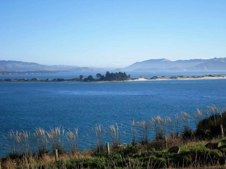 Family travel blog - Otago Peninsula